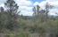 3 E Highline Drive, 3, Star Valley, AZ 85541