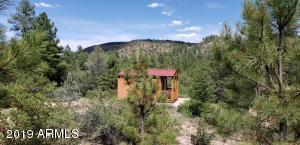 470 E FOREST SERVICE ROAD 51, 5, Young, AZ 85554