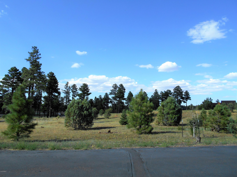 2254 Big Bear Circle