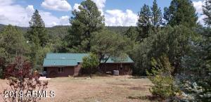 125 S CREEKSIDE Lane, Young, AZ 85554