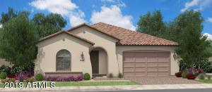 1035 W Beech Tree Avenue, Queen Creek, AZ 85140