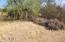 22525 E Catawba Trail, 1, Florence, AZ 85132