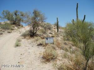 29539 W PEAKVIEW Road, 199, Unincorporated County, AZ 85361