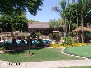3825 E CAMELBACK Road, 222, Phoenix, AZ 85018