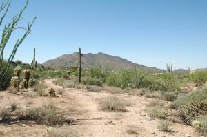 0 N OCOTILLO RIDGE Drive, 21, Carefree, AZ 85377