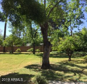 203 E Griswold Road, 4, Phoenix, AZ 85020
