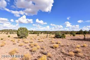 117 Acres W Hard Rock Way, 429, Seligman, AZ 86337