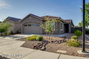 3813 E DESERT BROOM Drive, Chandler, AZ 85286