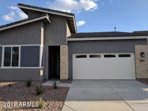 239 E DESERT BROOM Drive, Chandler, AZ 85286