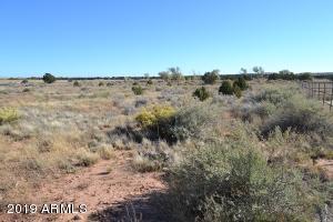 TBD Sunflower Drive, 15, Snowflake, AZ 85937