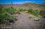 One noted architect who has hiked the area, found 6 or 7 suitable homesites on the hills with dramatic views. They are reached by the old mining road.