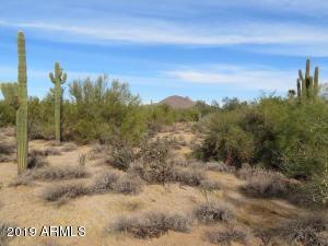 8002 E Vista Bonita Drive, 95, Scottsdale, AZ 85255