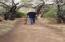 Metate Trail mesquite bosque