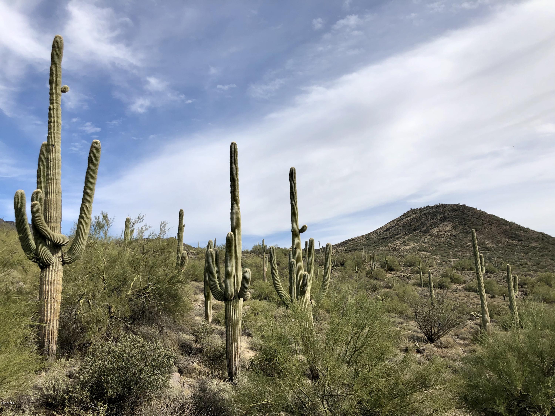 Photo of 41200 N 72nd Street, Cave Creek, AZ 85331