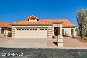 10618 E COOPERS HAWK Drive, Sun Lakes, AZ 85248