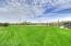 Lush Green Community Parks