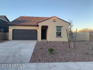 272 W Mammoth Cave Drive, San Tan Valley, AZ 85140
