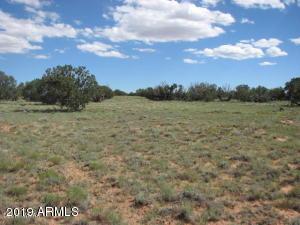 Lot 573 Chevelon Canyon Ranch #4, 573, Overgaard, AZ 85933