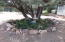 440 S HOMESTEAD Road, Young, AZ 85554