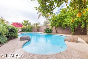 26702 N 24TH Drive, Phoenix, AZ 85085