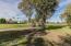 632 S Essex Lane, Mesa, AZ 85208