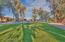 Lush grass in community park