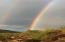 Double rainbow in back yard