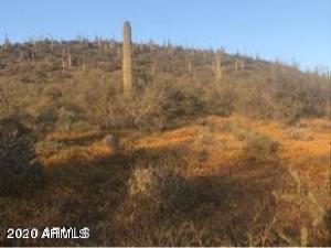 2224 E Circle Mountain Road, -, New River, AZ 85087
