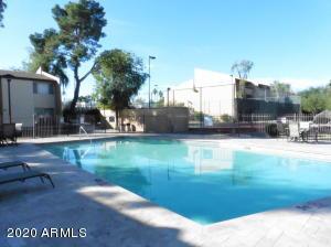 8055 E THOMAS Road, F202, Scottsdale, AZ 85251