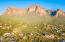 Front row view of the Superstition Mountains!