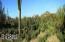 8510 E TECOLOTE Circle, Scottsdale, AZ 85266