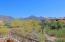 16600 N THOMPSON PEAK Parkway, 1007, Scottsdale, AZ 85260