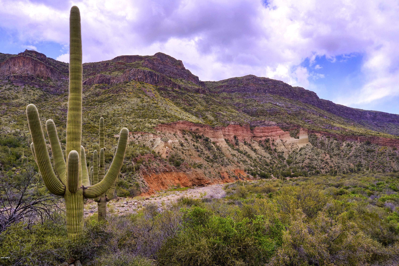 0000 Tara Springs Road, Black Canyon City, Arizona 85324, ,Land and Lots,For Sale,Tara Springs,6038501