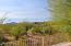 34788 N 99TH Way, Scottsdale, AZ 85262