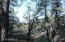 204 E Cline Crossing, -, Young, AZ 85554