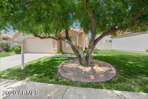 Street view - beautiful mature front yard shade tree