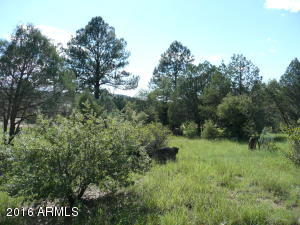 7390 W Forest Svc Rd 200, 20, Young, AZ 85554
