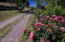 Pleasing entry road to the property is lined by a profusion of different roses and flowers