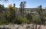 736 E NAEGELIN XING Crossing, Young, AZ 85554