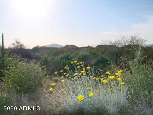 36290 N Boulder View Drive, 85, Scottsdale, AZ 85262