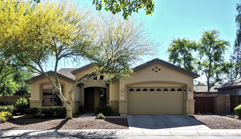 Photo of 3667 S NEWPORT Street, Chandler, AZ 85286