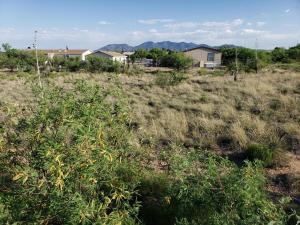 0 W Cactus Blossom Drive, 428
