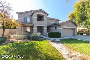 313 W MACAW Drive, Chandler, AZ 85286