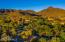 10191 E DIAMOND RIM Drive, 2122, Scottsdale, AZ 85255