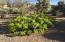 10874 E PROSPECT POINT Drive, Scottsdale, AZ 85262