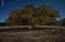 49921 N AZ HIGHWAY 288 Highway, Young, AZ 85554