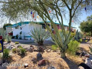 Beautiful Shade Trees and Low Maintenance desert landscaping