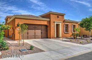 1688 E MAYGRASS Lane, San Tan Valley, AZ 85140