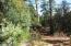 1104 N Button Bush Court, 807, Payson, AZ 85541