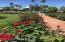Intimate view of Rose Garden